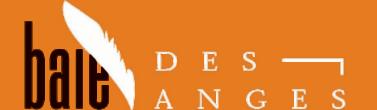 Logo Baie des Anges